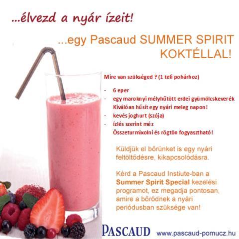 Élvezd a nyár ízeit egy Pascaud Summer Spirit koktéllal!